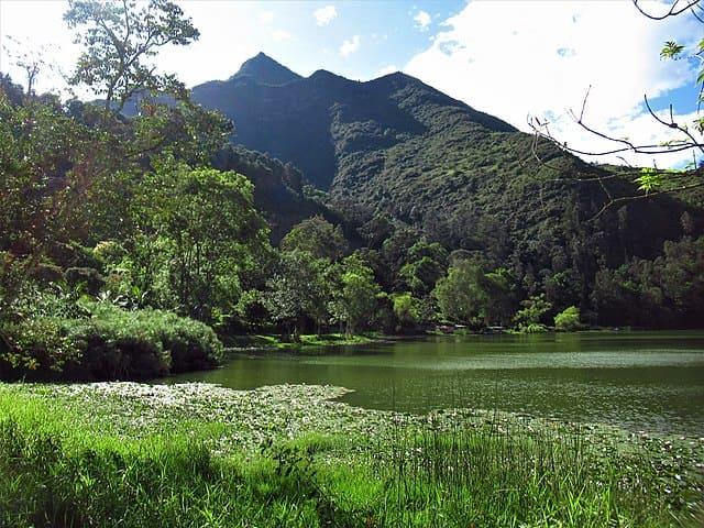 Naturaleza | Caminatas y Aventuras | Múcura Experience
